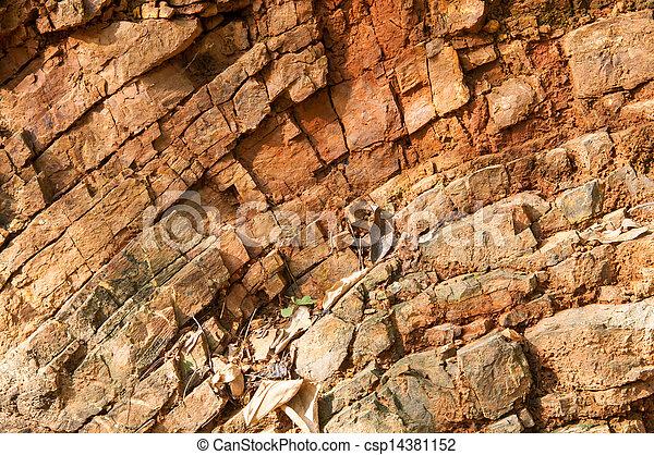 wald, grundgestein - csp14381152