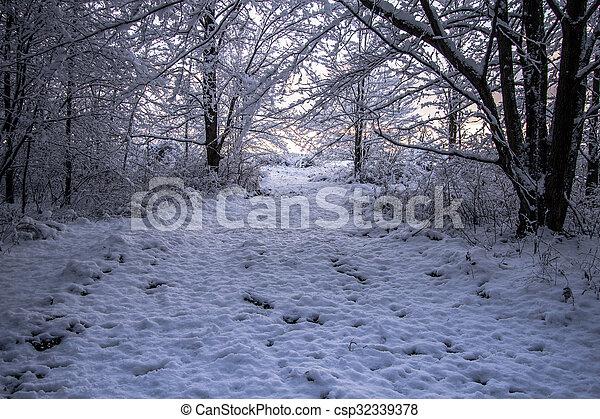 Walk In A Winter Wonderland - csp32339378