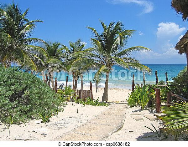 Walk path to a tropical white beach and blue sea, Tulum, Mexico - csp0638182