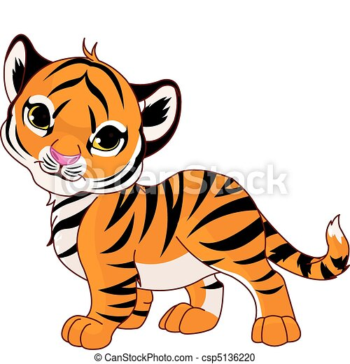 walking baby tiger image of walking cute baby tiger rh canstockphoto com baby white tiger clipart baby tiger face clipart