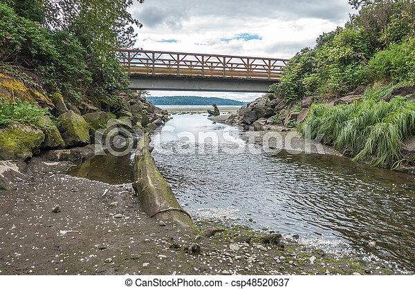 Walking Bridge And Stream 5 - csp48520637