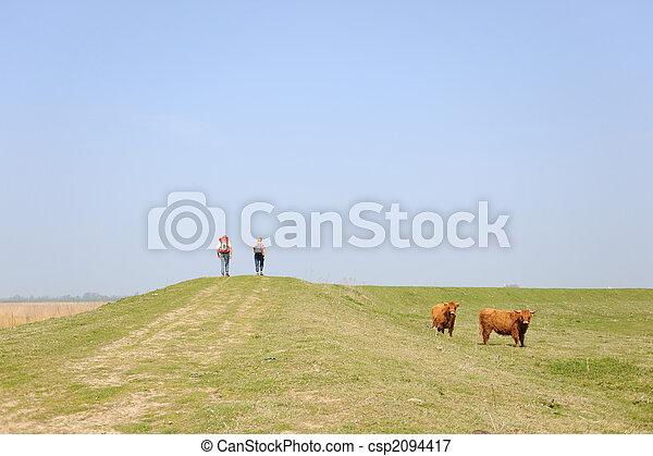 Walking in nature - csp2094417