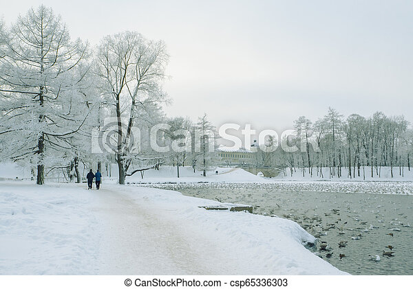 Walking people in the winter Park, Winter lake. - csp65336303