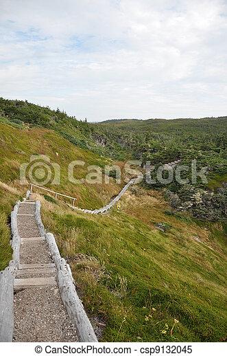 walking trail - csp9132045