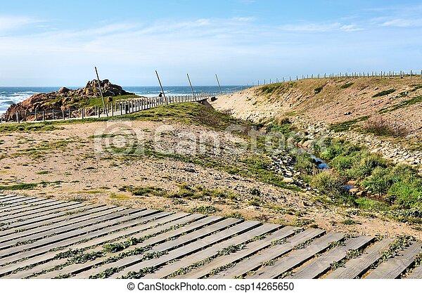 Walkways on the beach - csp14265650