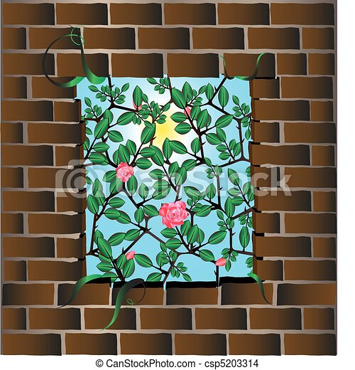 wall and roses - csp5203314