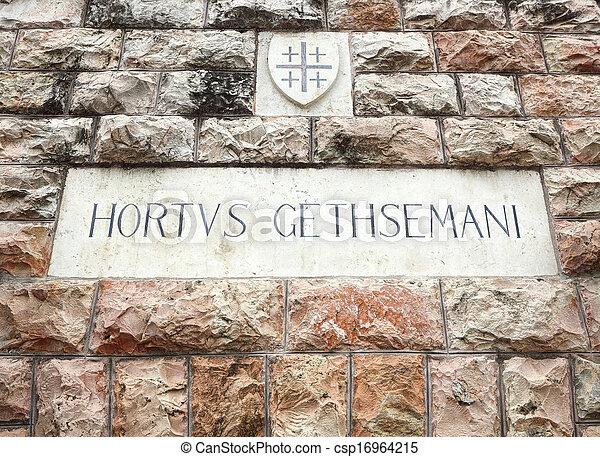 Wall in the garden of Gethsemane - csp16964215