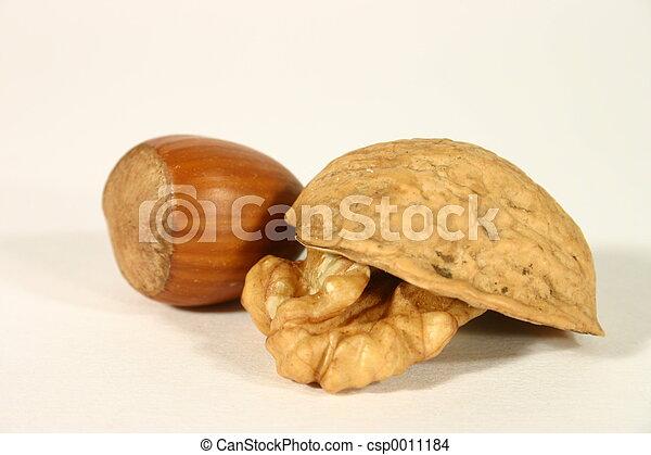 Walnut and hazelnut - csp0011184