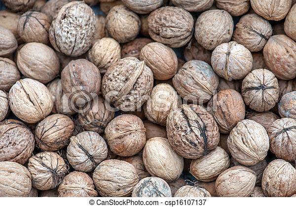 walnut - csp16107137