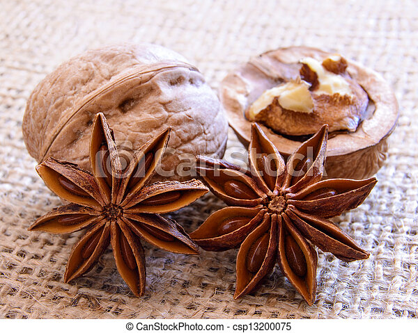 Walnuts and Star Anise on Burlap Background - csp13200075