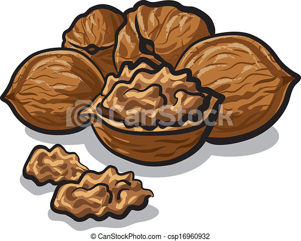 walnuts - csp16960932