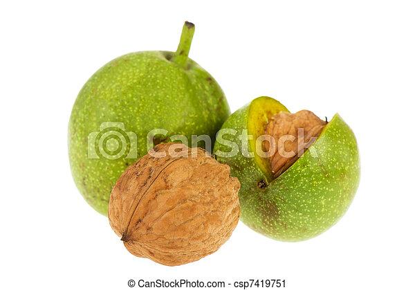 Walnuts in husk - csp7419751