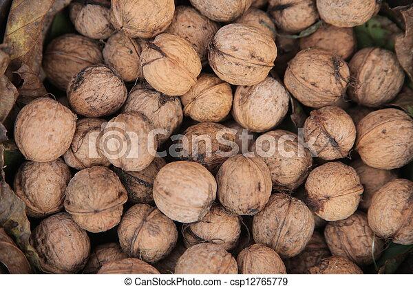 Walnuts - csp12765779