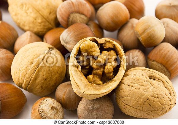 walnuts - csp13887880