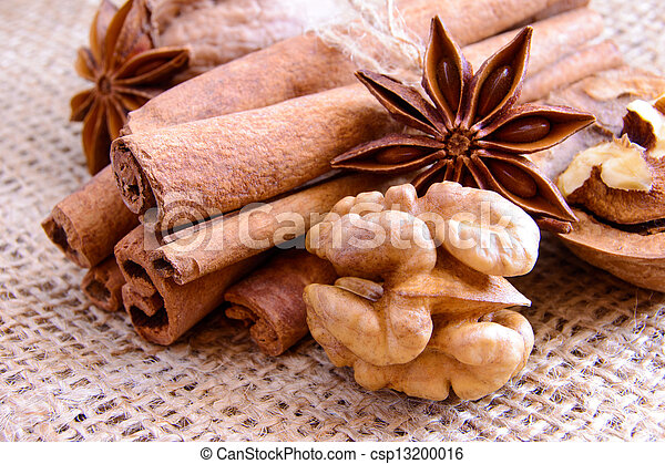 Walnuts, Star Anise and Cinnamon on the Burlap Background - csp13200016