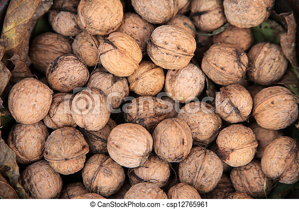 Walnuts - csp12765961