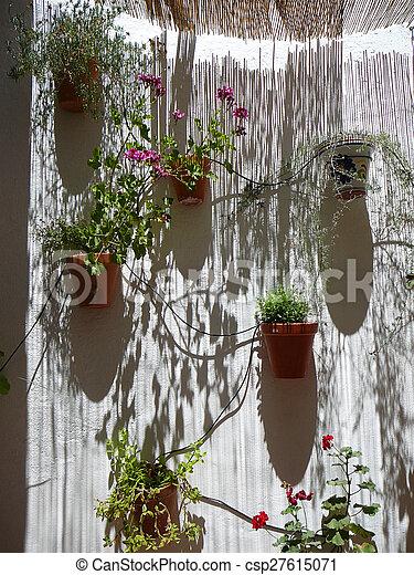 Wand Schattenhaft Blumentopfe Wand Schiebedach Streifen
