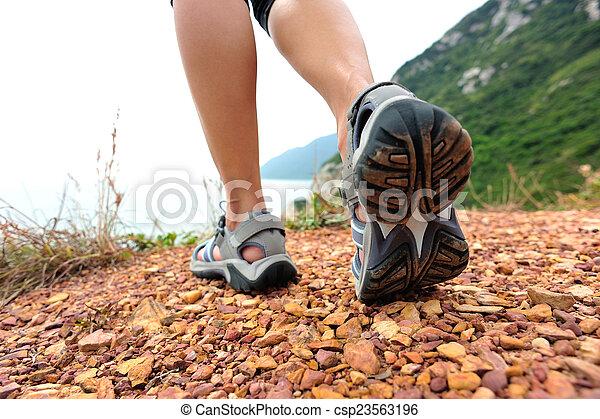 wanderer, strand, woman, wandert, spur - csp23563196