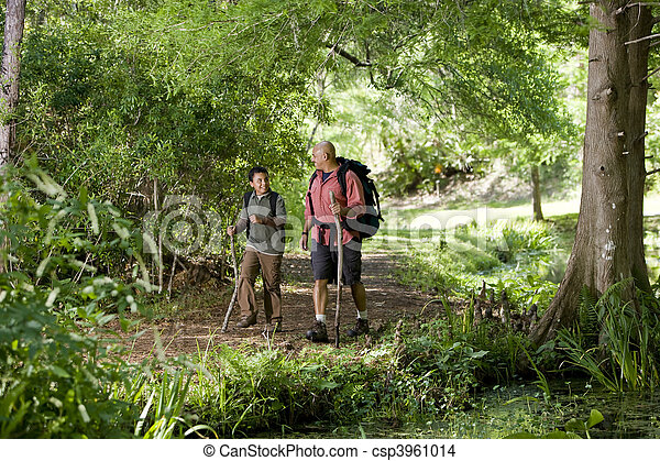 wandern, spanisch, vater, sohn, spur, wälder - csp3961014