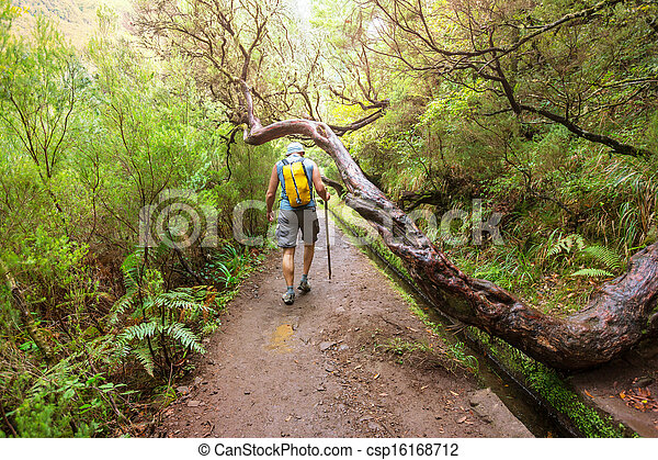 Hike in madeira - csp16168712