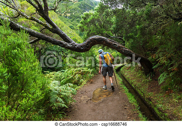 Hike in madeira - csp16688746