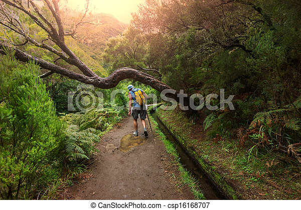 Hike in madeira - csp16168707