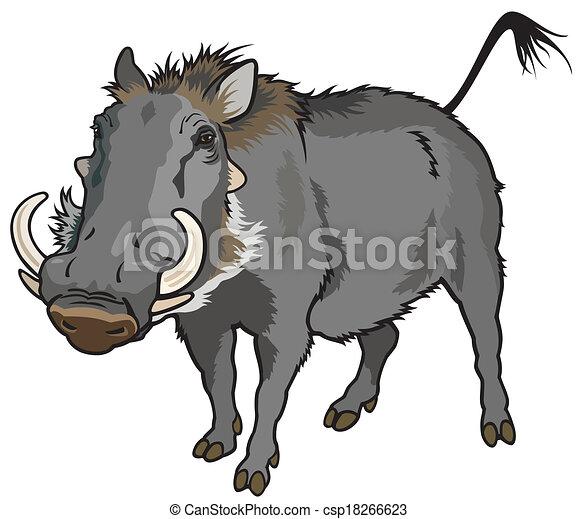 warthog - csp18266623