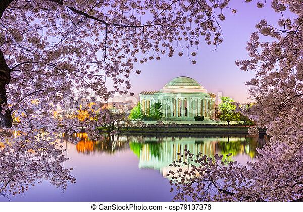 Washington, DC at the Tidal Basin and Jefferson Memorial - csp79137378