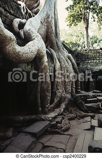 wat angkor, ruins-, cambodge - csp2400229