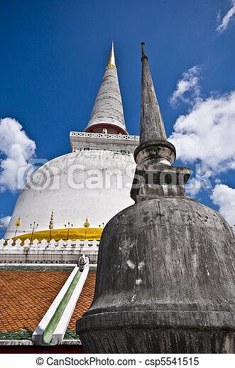 Wat Phra Mahathat - csp5541515