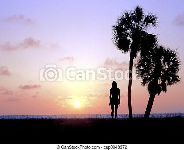 Watching the Sunset - csp0048372
