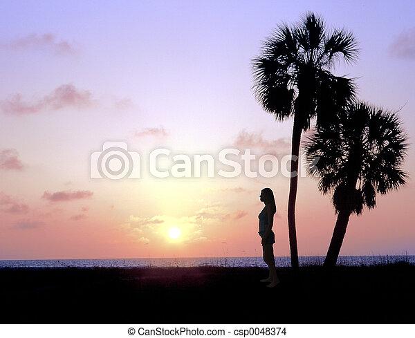 Watching the Sunset - csp0048374