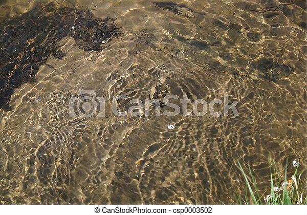 Water Background - csp0003502