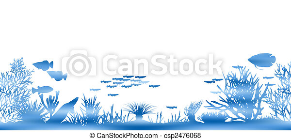 Water coral - csp2476068