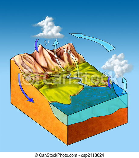 Water cycle - csp2113024