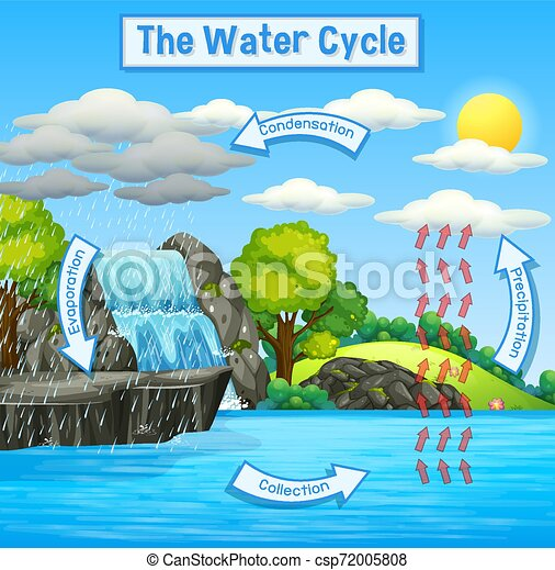 Water Cycle of Earth - csp72005808