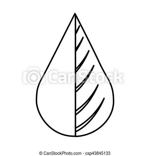 water drop and leaf plant - csp43845133