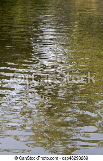 Water ripples - csp48293289