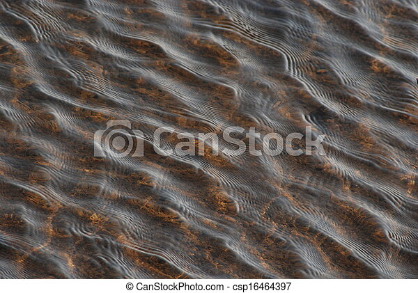 Water ripples - csp16464397