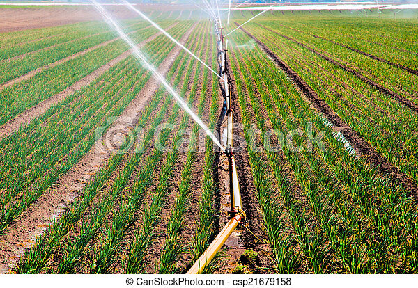 Water spray in agriculture - csp21679158