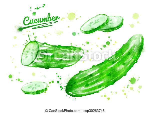Watercolor cucumbers. - csp30263745