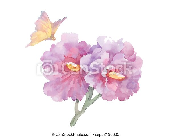 Watercolor garden flowers with butterfly isolated on white background. - csp52198605