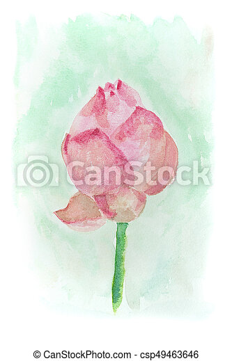 Watercolor Of Lotus Flower Abstract Watercolor Illustration Of
