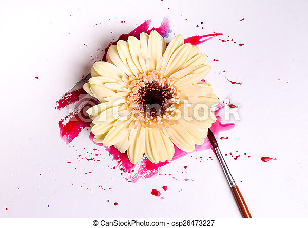 Watercolor paint - csp26473227