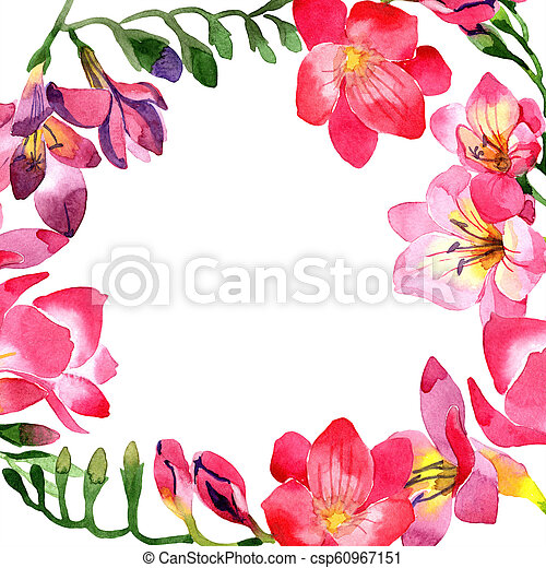 Watercolor pink freesia flower floral botanical flower frame watercolor pink freesia flower floral botanical flower frame border ornament square aquarelle wildflower for background texture wrapper pattern mightylinksfo