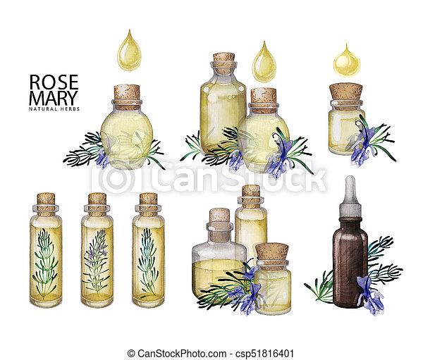 Watercolor rosemary oil bottles - csp51816401