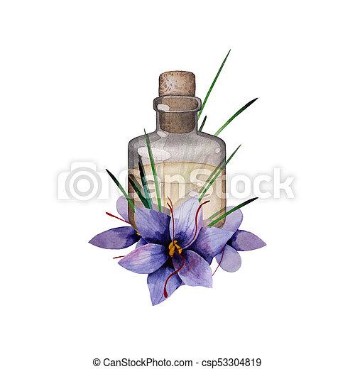 Watercolor rosemary oil - csp53304819