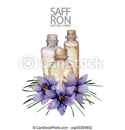 Watercolor rosemary oil - csp53304852