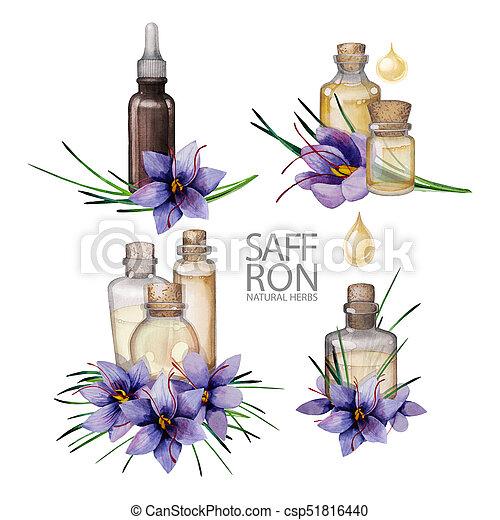 Watercolor rosemary oil - csp51816440