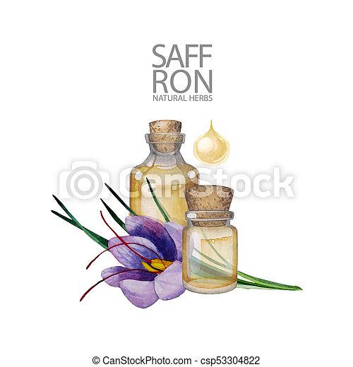 Watercolor rosemary oil - csp53304822